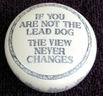 If you are not the lead dog